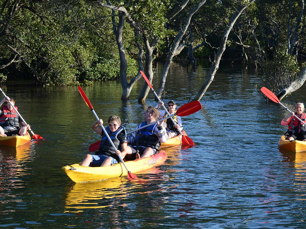 Kayak Guided Tours